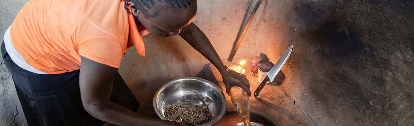 ESMAP Helps DRC to Mobilize Private Sector for Boosting Electricity Access