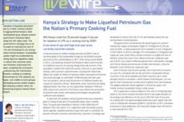 Kenya's Strategy to Make Liquefied Petroleum Gas the Nation's Primary Cooking Fuel