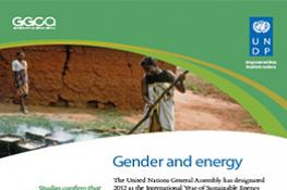 UNDP Gender and Energy Policy Brief