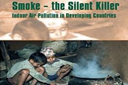 Smoke: The Killer in the Kitchen | Indoor Air Pollution in Developing Countries