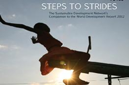 Steps to Strides: Sustainable Development Network's Companion to the World Development Report | Companion to WDR 2012